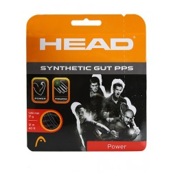 Strings Head Synthetic Gut Pps Set String